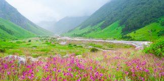 Uttarakhand Tourism all set to introduce mobile caravans for tourists
