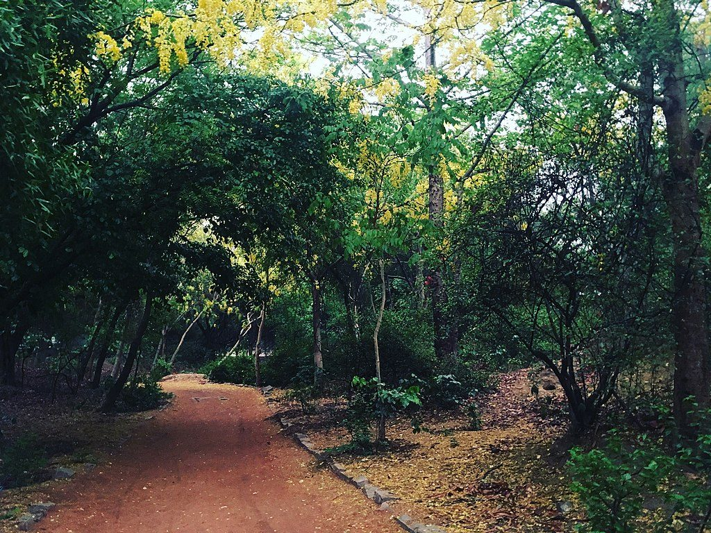 Haunted places in India, Sanjay Van