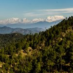 My Blissful Experience Of 2 Days in Binsar