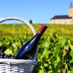 Here Are 13 Of The Best Wine Regions Around the World