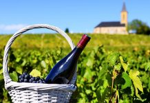 Bottle of red wine in a basket of reasons near a typical church