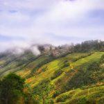 Lamahatta-Kalimpong-Darjeeling: The Must-Visit Trinity of West Bengal