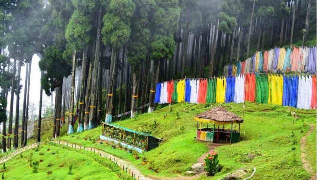 Landscape, Lamahatta, West Bengal