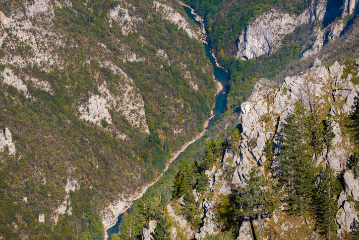 Tara River Canyon in Durmitor national park in Montenegro