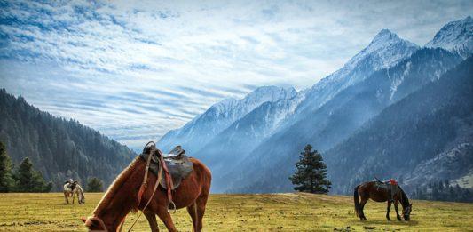 Beautiful Aru Valley