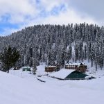 A Beautiful, Action-packed, Memorable Day In Gulmarg