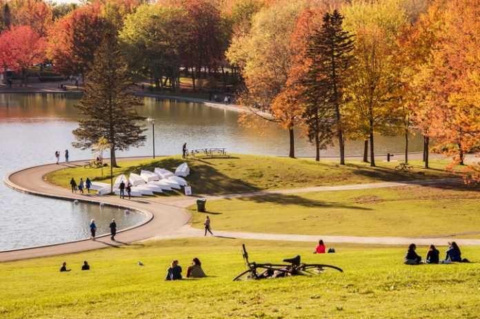 People enjoy a warm autumn day in the Mont Royal Park