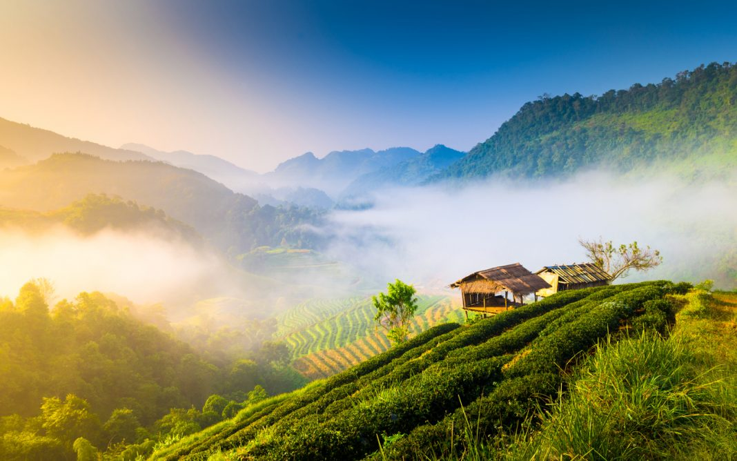 Beautiful sunshine at misty morning mountains at north thailand