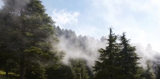 The clouds sliding down Himalaya mountains Dalhousie