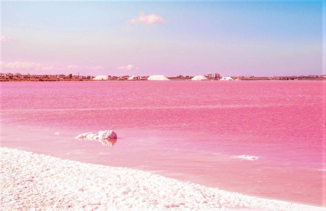 Pink Salt lake. Spain, Torrevieja Fantastic landscape