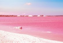 Pink Salt lake. Spain, Torrevieja Fantastic landscape