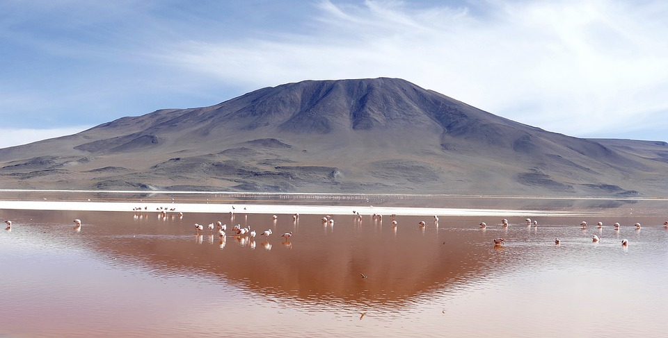 Laguna Colorada pink lakes