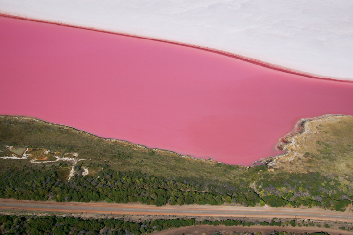 Pink Lake (Hutt Lagoon, Western Australia)
