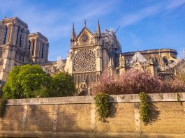 view of Notre Dame from Paris after the fire of April,15th, 2019