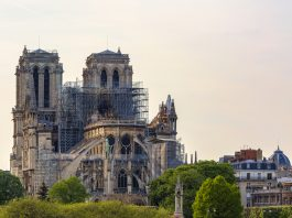 Notre Dame Cathedral in Paris After the Fire Famous buildings