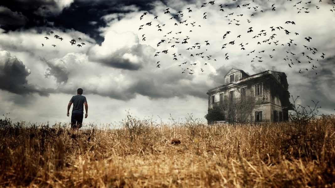 Man walking in a field - haunted houses