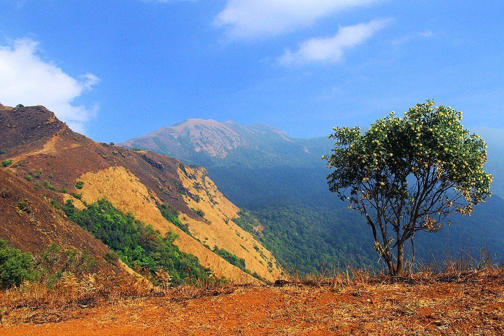 kodachadri trekking in south india