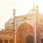 The Delhi De Tour – Day 2 Of My Delhi Sightseeing Trip