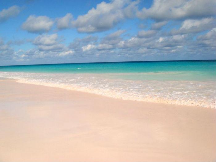 Pink Beaches