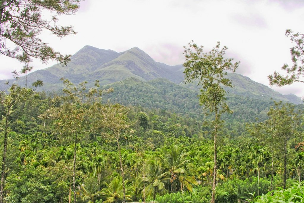 Wayanad is among the nearest hillstations to Bangalore