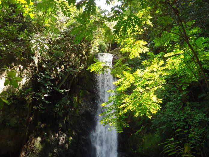 Cascada Parque Los Chorros (Caracas)