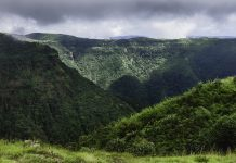 Khasi hills covered in forest over steep slopes, Meghalaya, India.
