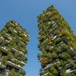 Africa's First Vertical Forest To Be Set Up In Cairo, Egypt, It Will Produce Nearly 8 Tonnes Of Oxygen Every Year
