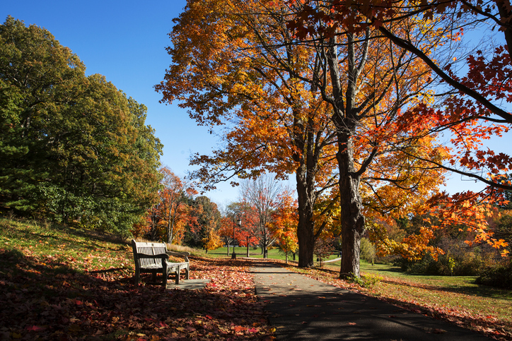 Washington DC, Rock Creek Park