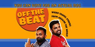 Off The Beat-You can vote for an actual dog