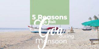 reasons to visit goa
