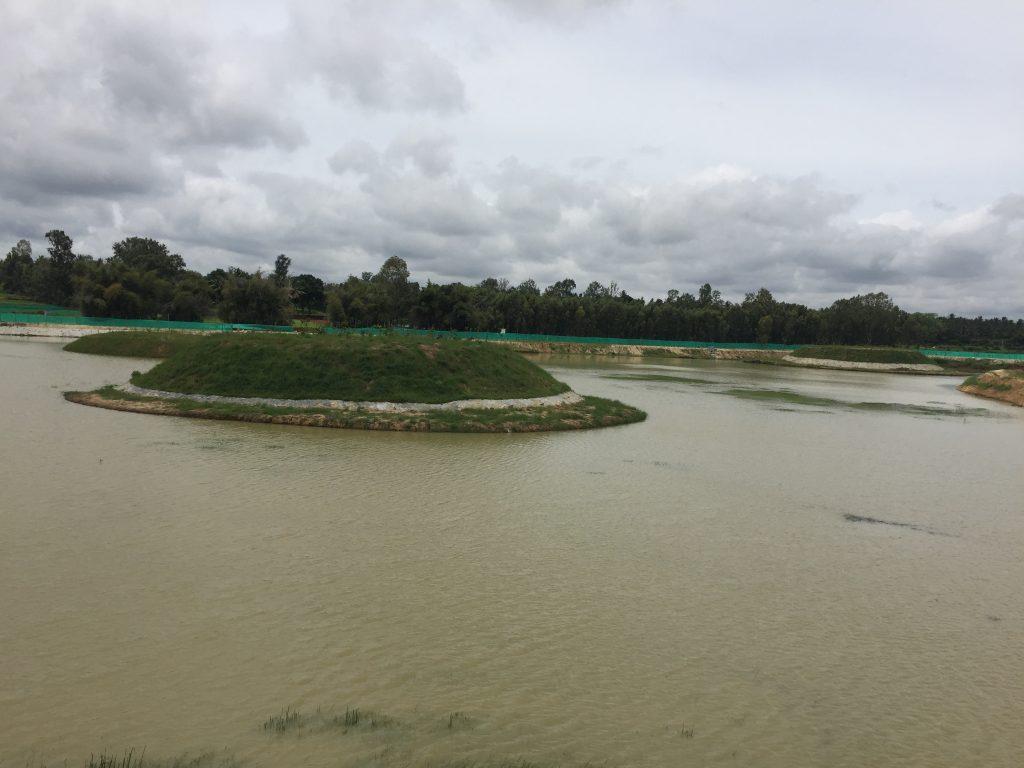 Kyalasanahalli lake conservation after rejuvenation