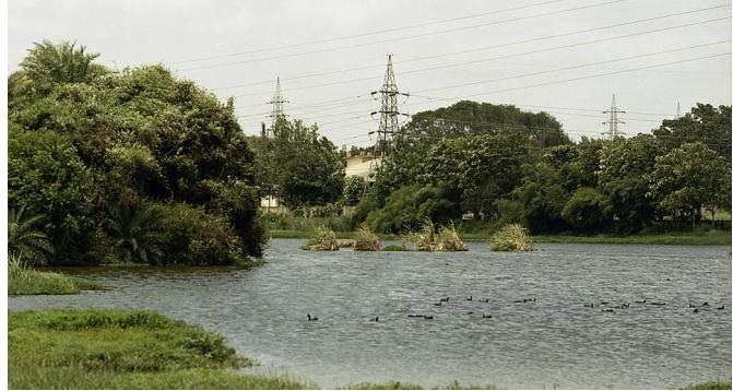 The Yelahanka-Puttenahalli lake conservation