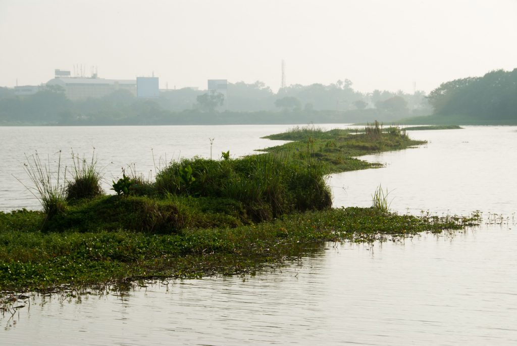 Bangalore City Lake