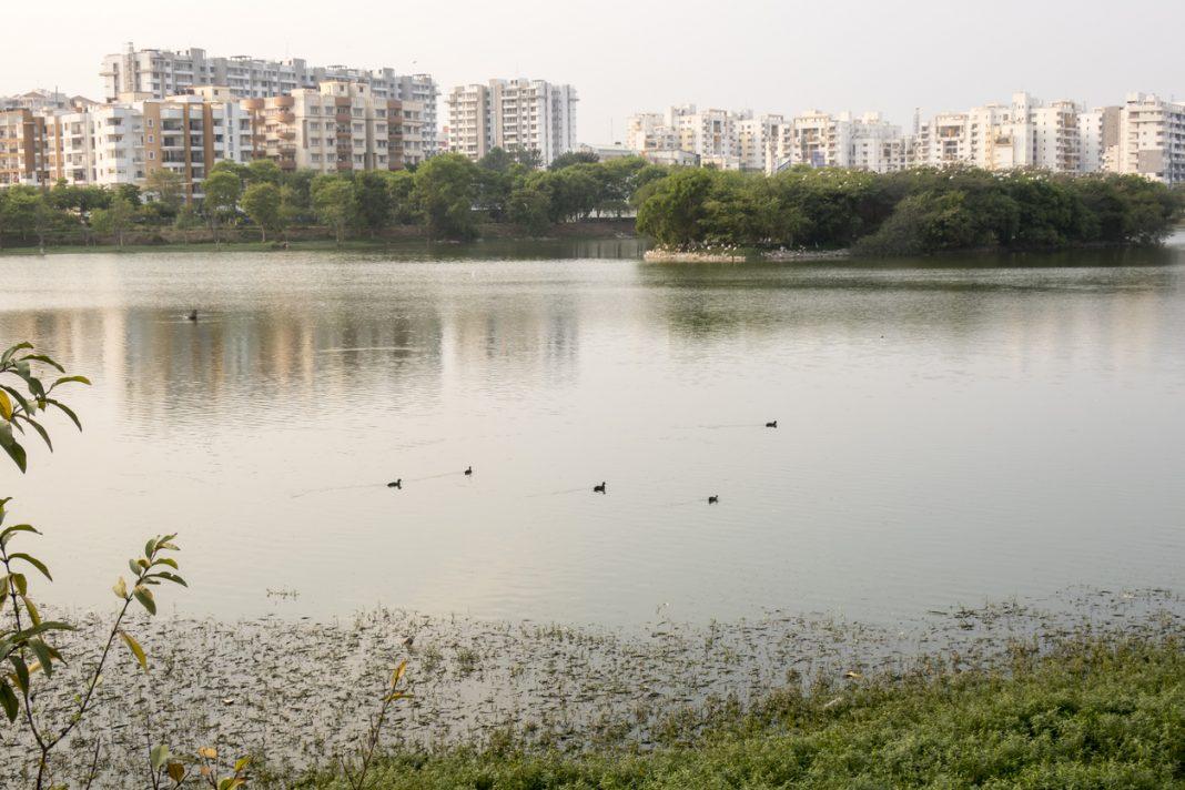 Lake in Bangalore, India