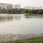 How Citizen Initiatives Have Revolutionized Lake Conservation in Bengaluru And Why It's Important For Tourism