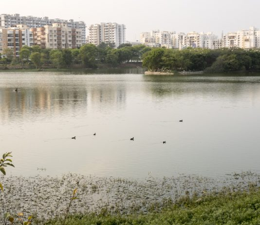 Lake in Bangalore, India