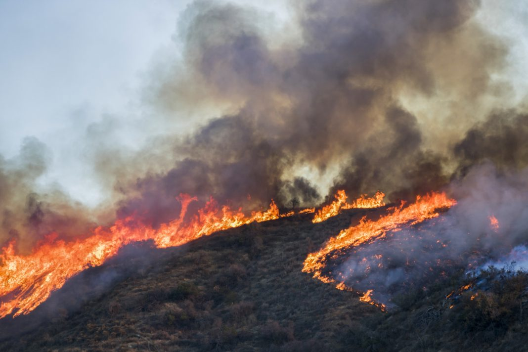 Hillside on Fire with Bright Flames and Black Smoke during California Woolsey Fire
