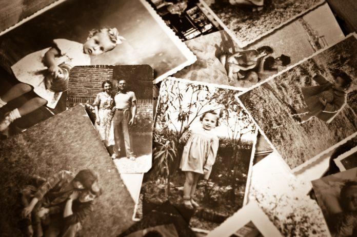 ancestry travel