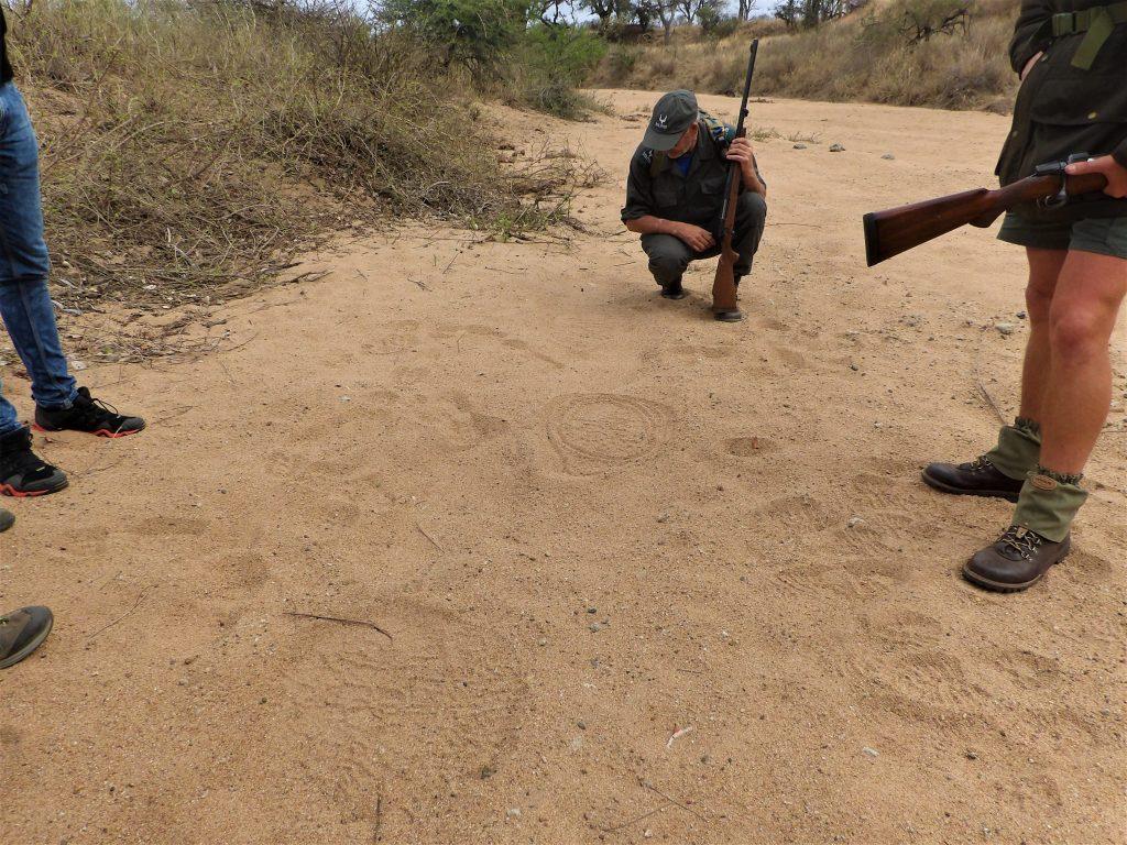 lauren walking safari