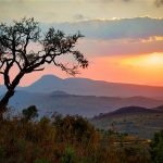 When You're In South Africa, Forget The Car - Do A Walking Safari