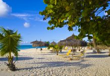 Beautiful beach with palapas and palmtrees, Eagle Beach, Aruba