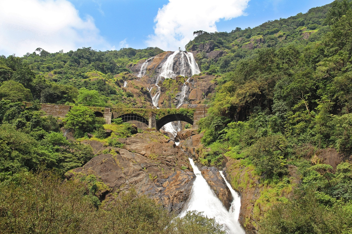 natural things to see in goa
