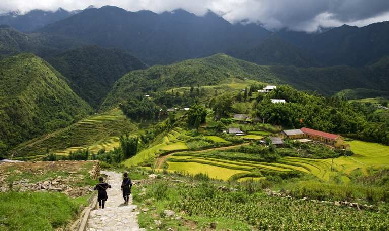 Hmong villagers walking through the rice fields in the mountain enclave of Sapa in northern Vietnam.