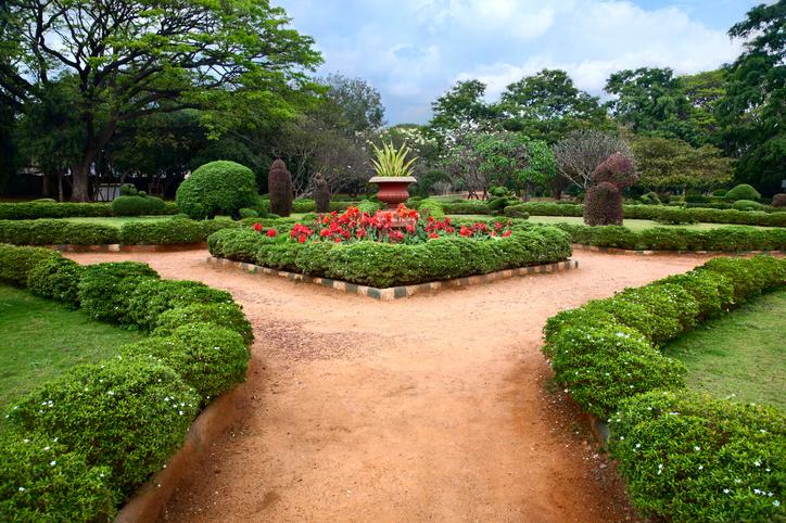 Beautiful view of Lalbagh botanical garden in Bangalore, Karnataka, India