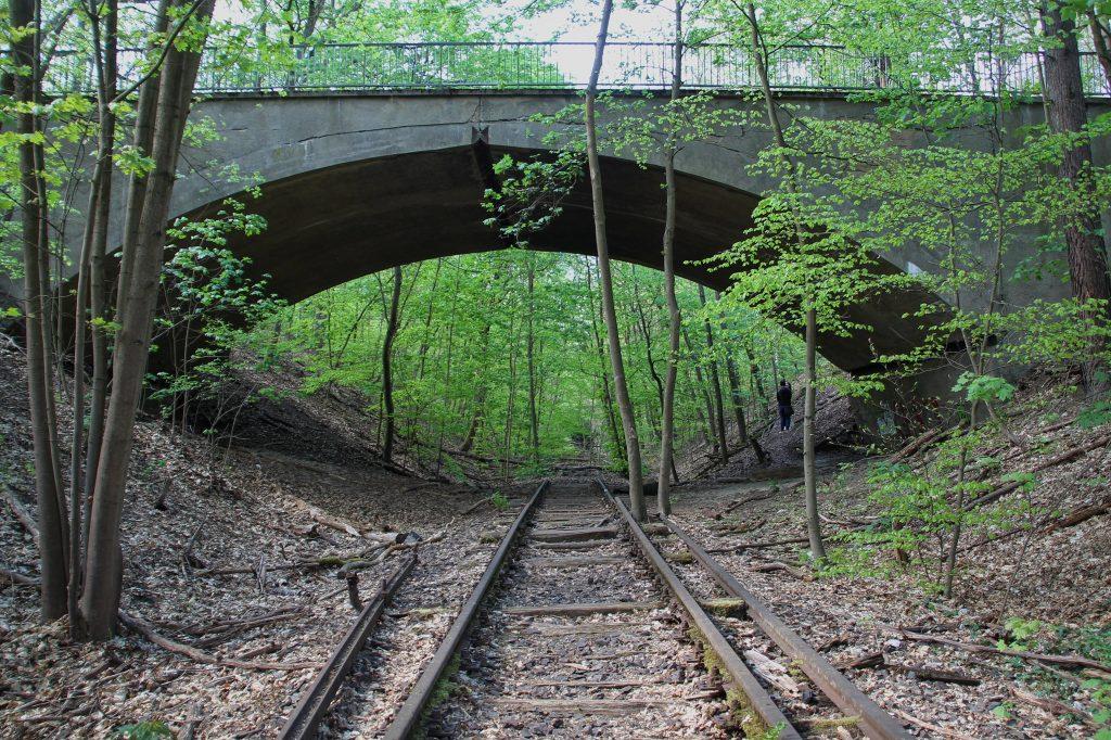 Tren Yolları: Düppeler Ormanı'nın Ortası