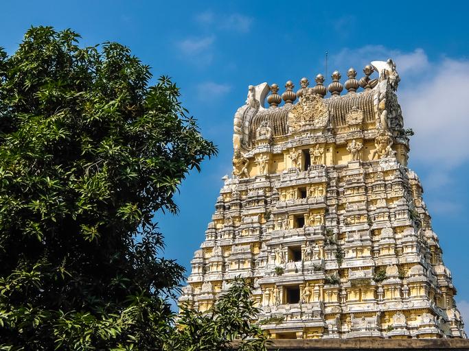 Sri Ekambaranathar Temple is the largest of the temples in Kanchipuram