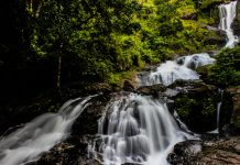 Beautiful Iruppu waterfalls in Kodagu Karnataka, India