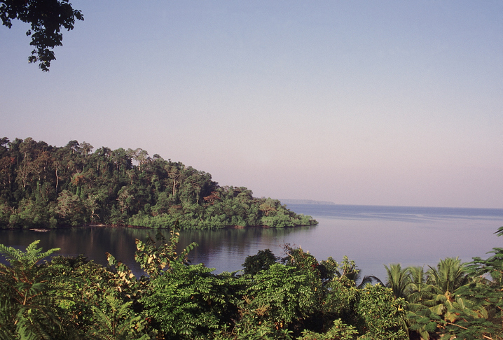 Alexandria Islands with the Bay of Bengal in the background in Mahatma Gandhi Marine National Park (Wandoor). South Andaman.