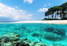 Marine national parks of India