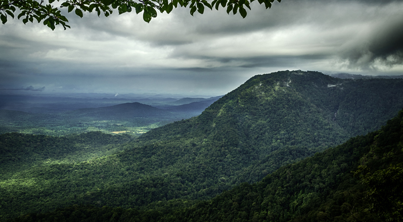 Agumbe is among the hillstations near Bangalore